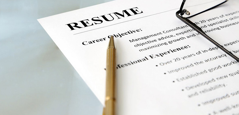 ways to build a resume like a professional resume writer the do s